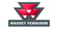 M. Ferguson